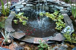 Small Fish Pond For Awsome Design Ideas Of Garden House