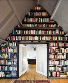 Coat the Wall with Bookshelves for Unique Library at Home