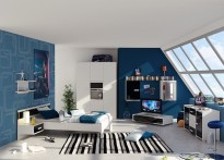 Attic for Bedroom for Teenage Boys