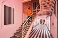 The Pink Zebra-RENESA Architecture Studio