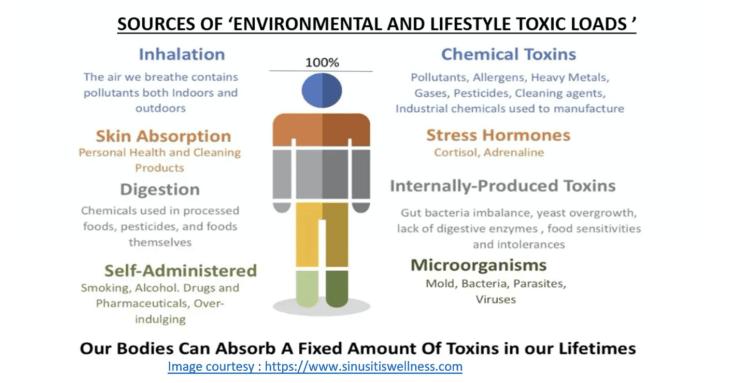 Biofield-Immunity-Toxin Loads