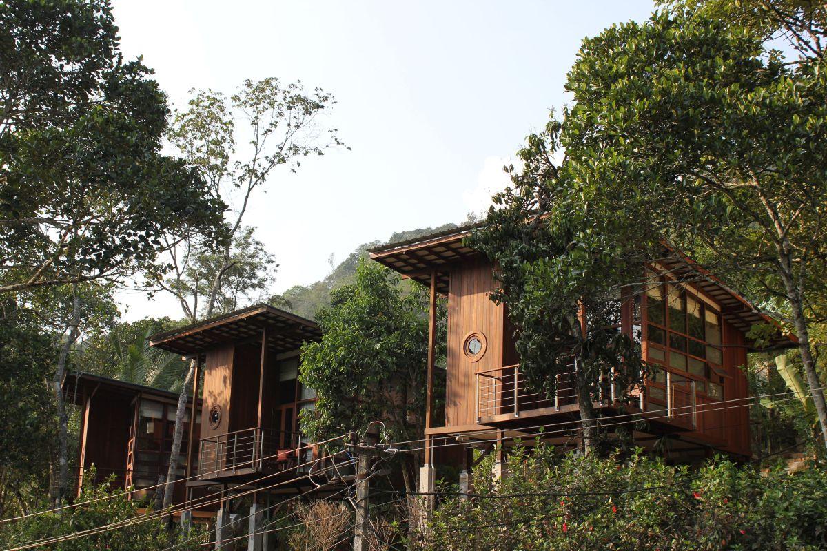 Cardamom Club, at Thekkady, Kerala, India, by Kumar La Noce 14