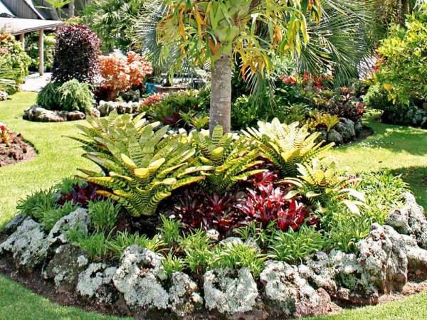make garden tropical