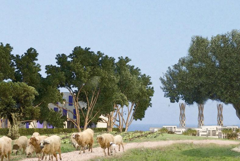 Constellation of communities Bouznika