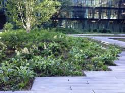KBC. Green courtyard.