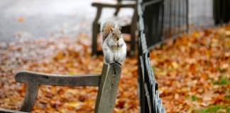 3 sposoby na lepszy nastrój jesienią.