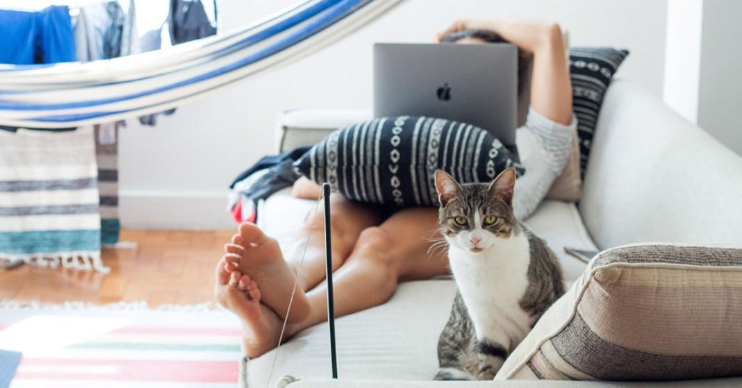 kobieta, kot i hamak