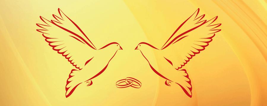 Die unversehrte islamische Ehe  Offenkundiges