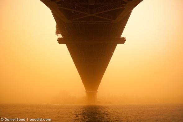 Sydney's Red Dawn