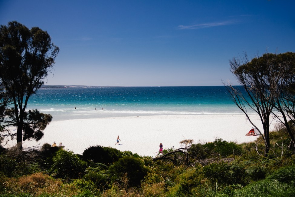 The beach at Bay of Fires was stunning to look at, but sadly the water was too chilly to jump in