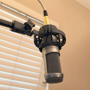 531 microphone image
