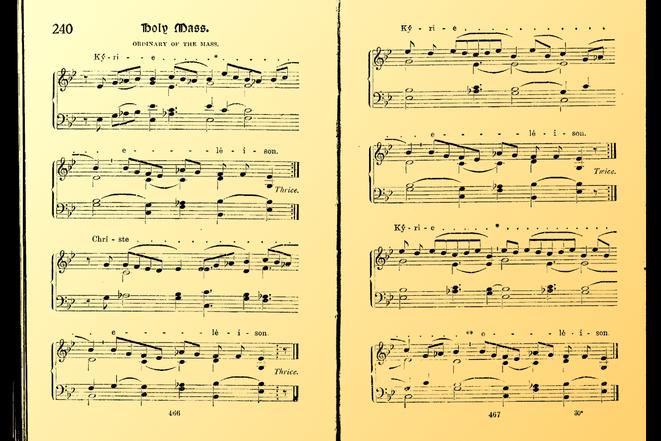 724 Organ Masses
