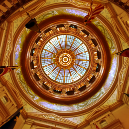 85764 Kansas Dome