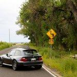 M Coupe Buyers Guide Tc Kline