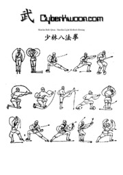 Shaolin Kung Fu Method Boxing.pdf (PDFy mirror) : Free