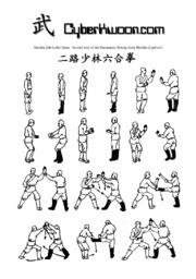 Shaolin Kung Fu Second Way Of Six Harmonies Boxing.pdf