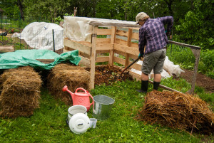 The author is back to gardening everyday, improving her and her soils health.