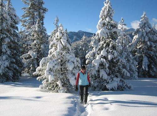 snowshoer at Galena Lodge