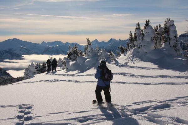 winter hike Sunshine Meadows, Banff, Alberta