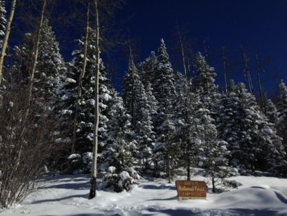 Santa Fe National Forest, home of the Santa Fe Snowshoe Classic