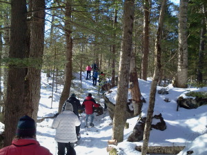 Snowshoeing through the woods in Jackson, NH