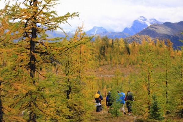 Fall hiking at Gibbon Pass