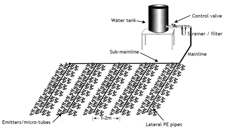 Diagram Likewise 2000 Honda Civic Exhaust System Diagram
