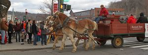 Rick Bunnell from Bunnell Farm in Litchfield drives the horse-drawn wagon during Main Street Christmas festivities in Winsted on Saturday afternoon.  Michael Kabelka/Republican-American