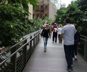 The High Line, seen here in September, is an elevated alternative to New York City's Central Park. The High Line traverses several different neighborhoods over the span of 1.45 miles.  CARRIE MACMILLAN / REPUBLICAN-AMERICAN