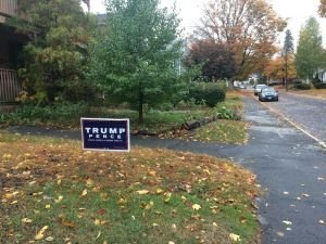 Trump-Pence signs, like this one in Torrington, are a common sight in Litchfield County for this election. Bruno Matarazzo Jr. Republican-American