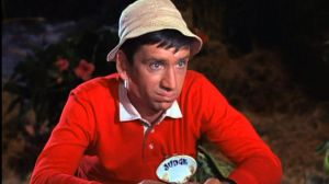 The seven castaways on the TV sitcom