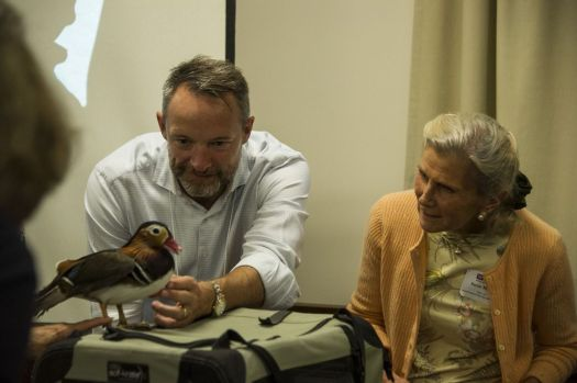 During a Western Connecticut Leadership session focusing on environmental issues in Greater Waterbury and the Litchfield Hills, Michael Lloyd and Susan Magee get a close look at a mandarin duck from Livingston Ripley Waterfowl Conservancy, a Litchfield nonprofit organization working to protect waterfowl and their habitats. [Photo by Rich Pomerantz, courtesy of Connecticut Community Foundation]     Carol