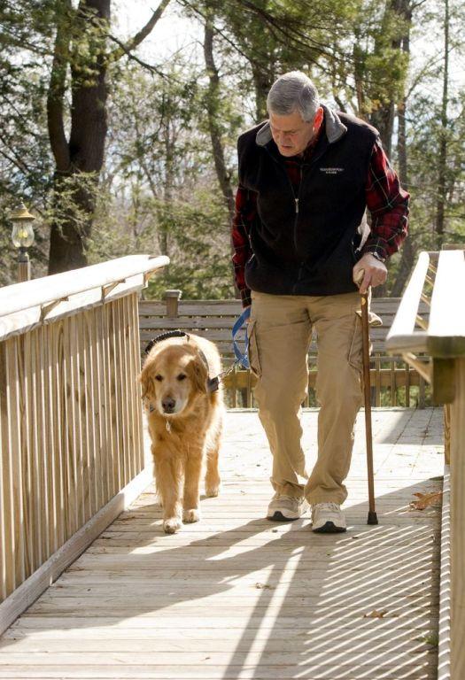 Gordon Schafer of Litchfield trains with his service dog