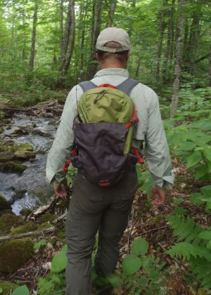 Spring Hike. Clear, flowing water means blackflies, and brush means ticks. Protect yourselves with proper clothing and insect repellent. (Tim Jones/EasternSlopes.com photo)