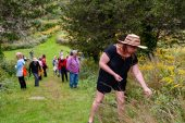 WOODBURY, CT. 23 September 2018-092318 - Kiri Clark picks some flower buds for tea later on as she leads a group of people in a therapeutic journey through the woods, using a technique inspired by the Japanese practice of shinrin-yoku, forest bathing, or taking in the forest atmosphere at the Flanders Nature Center Van Vleck Sanctuary in Woodbury on Sunday. Bill Shettle Republican-American