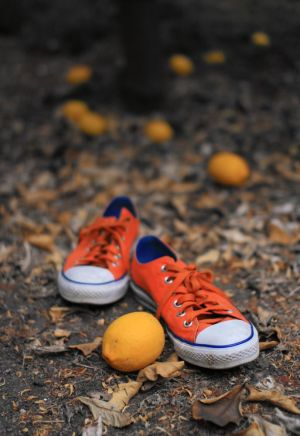 The height of fall fashion for men: orange sneakers