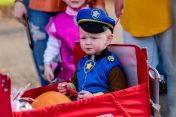 """SOUTHBURY, CT. 26 October 2019-102619BS398 - Braylen Egan, 2, of Watertown is dressed as Chase from """"PAW Patrol""""sits comfortably in his wagon waiting to enter the ninth Annual Trick-or-Treat Spooktacular at the Southbury Center Firehouse on Saturday. The firehouse was transformed into a maze of different themed-rooms where kids could collect treats. Bill Shettle Republican-American"""
