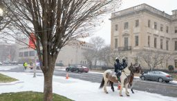Waterbury Mounted Police wait outside City Hall on Sunday during the inauguration for newly elected and re-elected officials Sunday at Waterbury City Hall. Jim Shannon Republican-American
