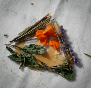 A close-up of a drawing in shape of a triangle made of honey and dry herbs on a canvas surface––green dried pieces of Lemongrass and Mint, Marigold leaves and Lavender. Photo by Cinthya Santos-Briones for Brewing Memories workshop, October 24, 2020.