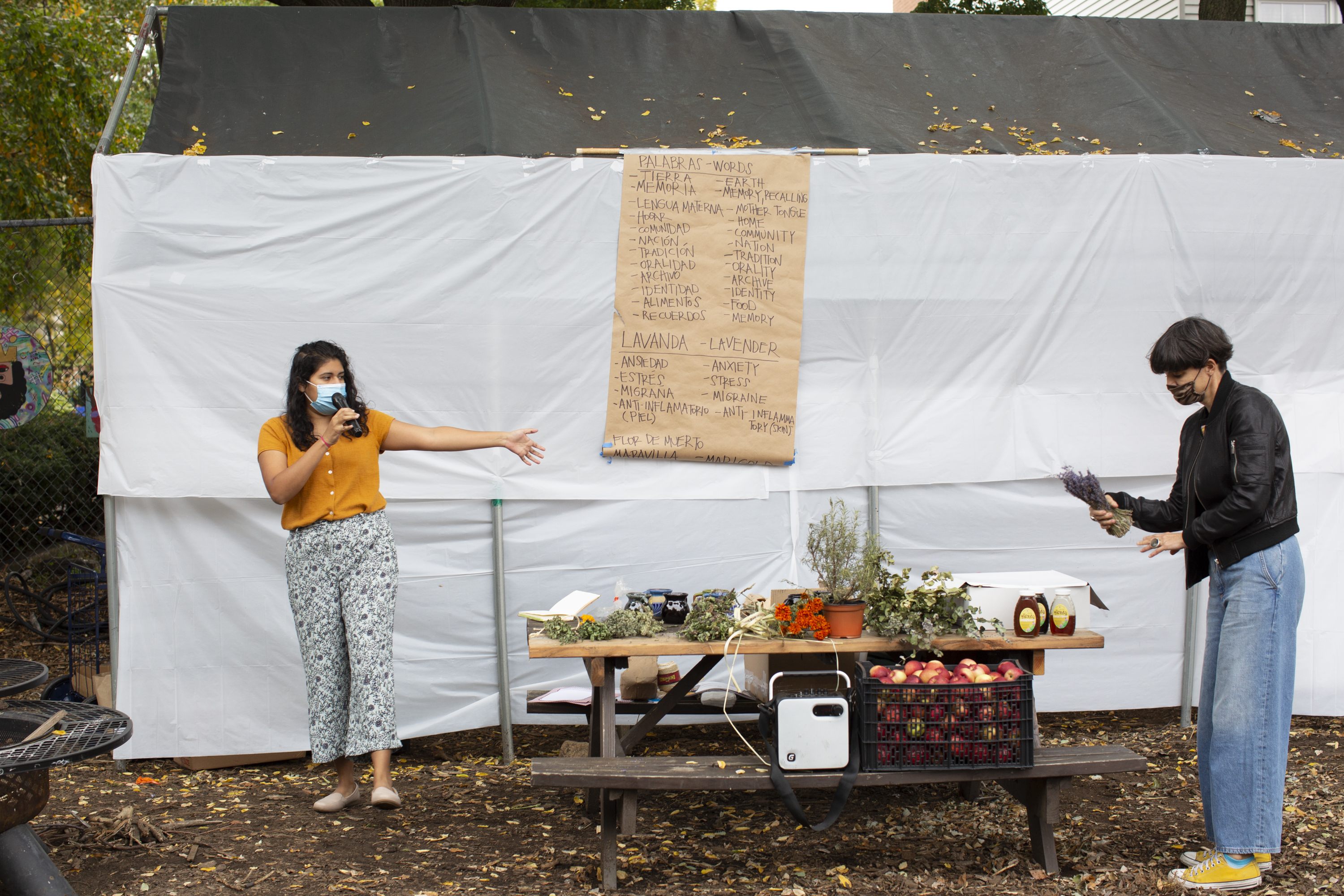 Carolina, wearing an orange shirt, and patterned pants, and Angeles, wearing a black leather jacket and blue jeans, stand in front of the participants of the workshop (out of frame). Angeles has a branch of lavender in her hands; Carolina is speaking using a microphone. Both wear face masks. In the back, a paper kraft board shows a list of words in English and Spanish that Carolina uses as part of the activity (for instance––tierra/earth; memoria/memory, recalling; lengua materna/mother tongue). The table showcases the different plants participants will learn about during the workshop, and jars of honey. There is also a crate with apples, a box with pan de muerto participants will share at the end, and a speaker. Photo by Cinthya Santos-Briones for Brewing Memories workshop, October 24, 2020.