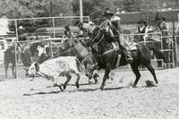 Image of rodeo club competing in a rodeo