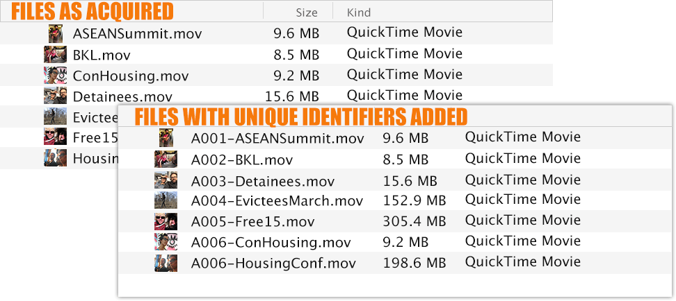 Use unique identifiers to distinguish and associate files.