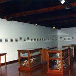 16. Imagen de la Exposición Documental y Fotográfica acogida en la Casa del Quinto en 1999 · San Andrés y Sauces