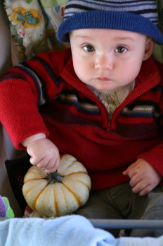 pumpkinpatch-74