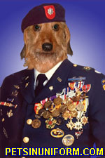 example_dachshund_1