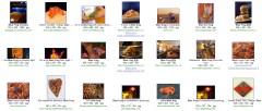 Blue Frog - orange filter