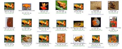 Frog- orange filter
