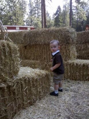 Apple Ridge Farms (3)