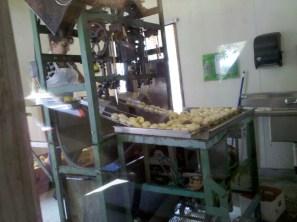 Boa Vista Orchards (2)