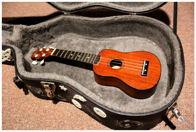 Ukulele in Guitar Case
